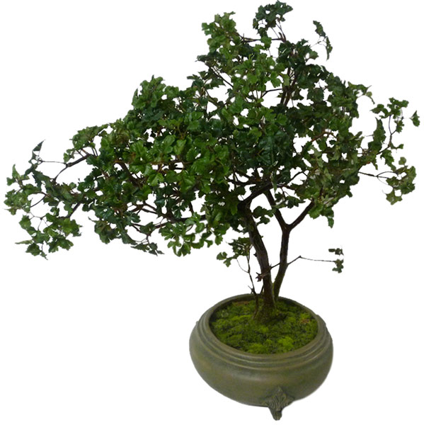 Silk Bonsai(M1)